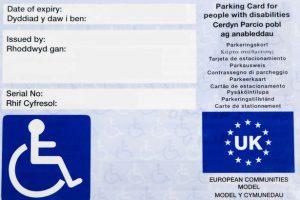Blue Badge Ectodermal Dysplasia Society